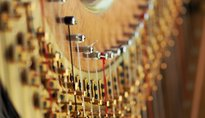 Concerto Angry Harps - Carisolo