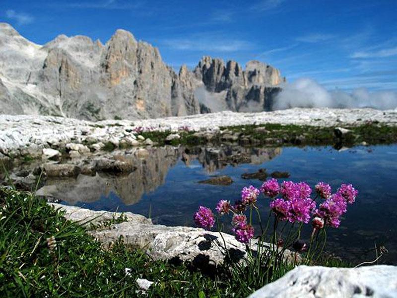 Vacanze Estive Estate In Trentino